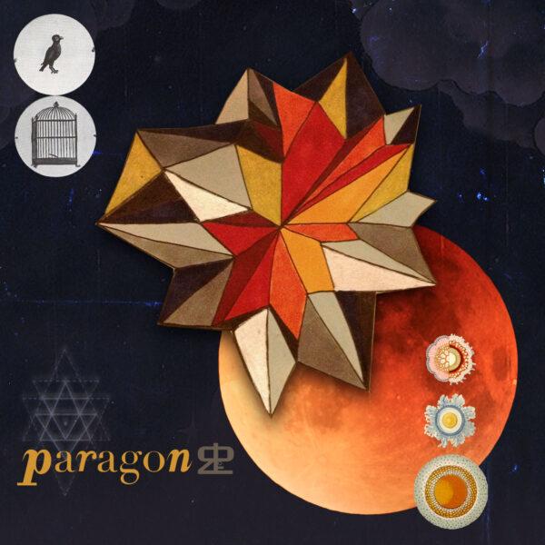 DSR:Paragon